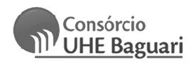 _logo_Consórcio da Usina Hidrelétrica de Baguari